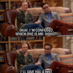 12 Best The Big Bang Theory Quotes from 'The Hot Tub Contamination' (10x05)