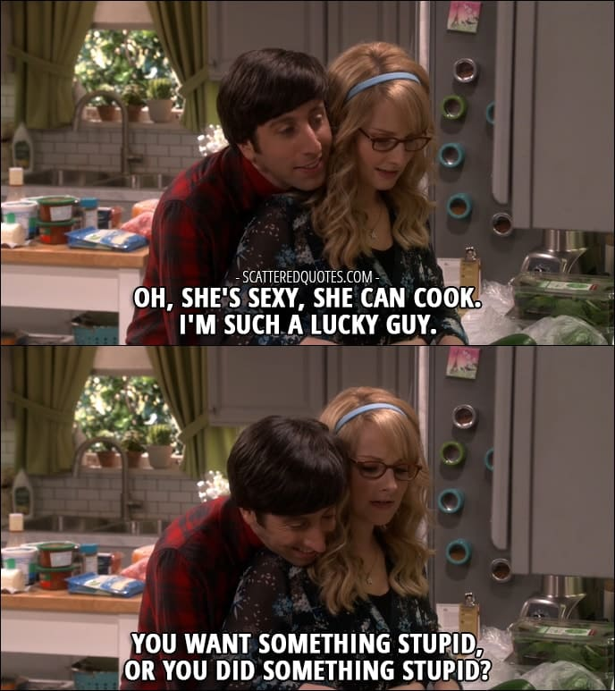 12 Best The Big Bang Theory Quotes from 'The Comic-Con Conundrum' (10x17) - Howard Wolowitz: Oh, she's sexy, she can cook. I'm such a lucky guy. Bernadette Rostenkowski-Wolowitz: You want something stupid, or you did something stupid?