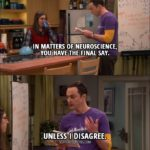 10 Best The Big Bang Theory Quotes from 'The Collaboration Fluctuation' (10x19)
