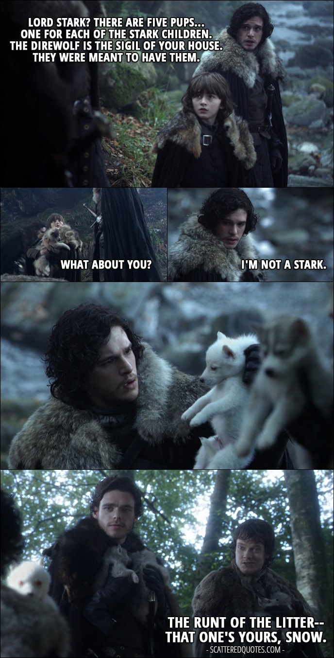 Quote from Game of Thrones 1x01 - Jon Snow (to Ned): Lord Stark? There are five pups... one for each of the Stark children. The direwolf is the sigil of your House. They were meant to have them. Bran Stark: What about you? Jon Snow: I'm not a Stark. Robb Stark: What is it? (Jon finds another little direwolf - white one) Theon Greyjoy: The runt of the litter-- that one's yours, Snow.