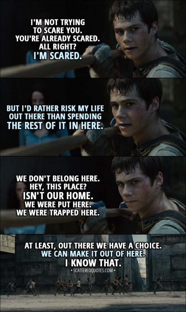 Quote from The Maze Runner (2014) - Thomas: I'm not trying to scare you. You're already scared. All right? I'm scared. But I'd rather risk my life out there than spending the rest of it in here. We don't belong here. Hey, this place? Isn't our home. We were put here. We were trapped here. At least, out there we have a choice. We can make it out of here. I know that.