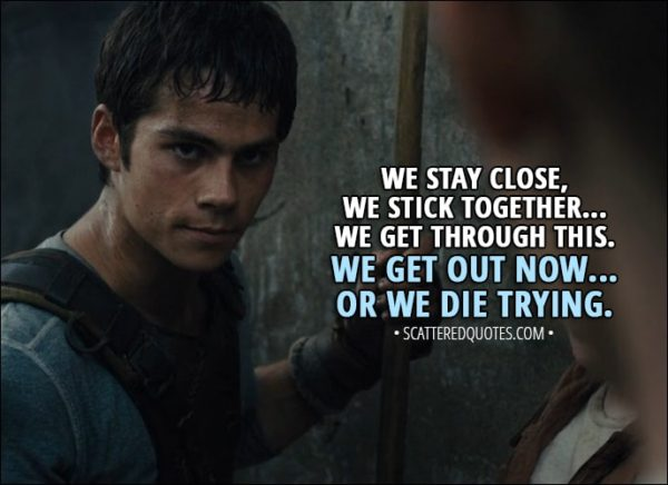 10+ Best 'The Maze Runner (2014)' Quotes