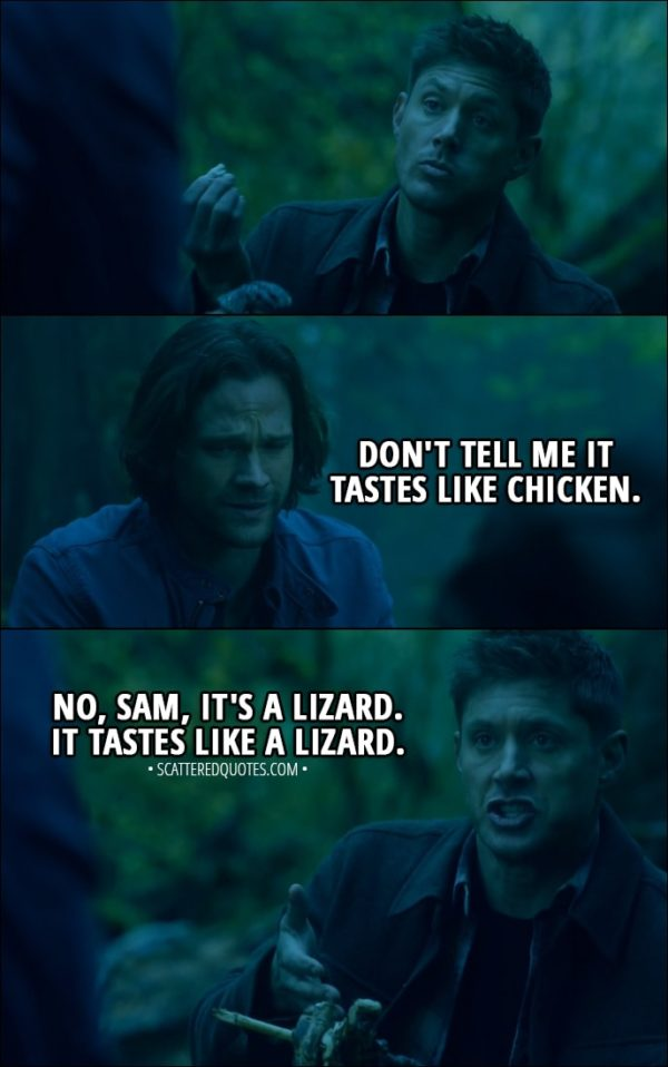 Quote from Supernatural 13x10 - Sam Winchester: Don't tell me it tastes like chicken. Dean Winchester: No, Sam, it's a lizard. It tastes like a lizard.