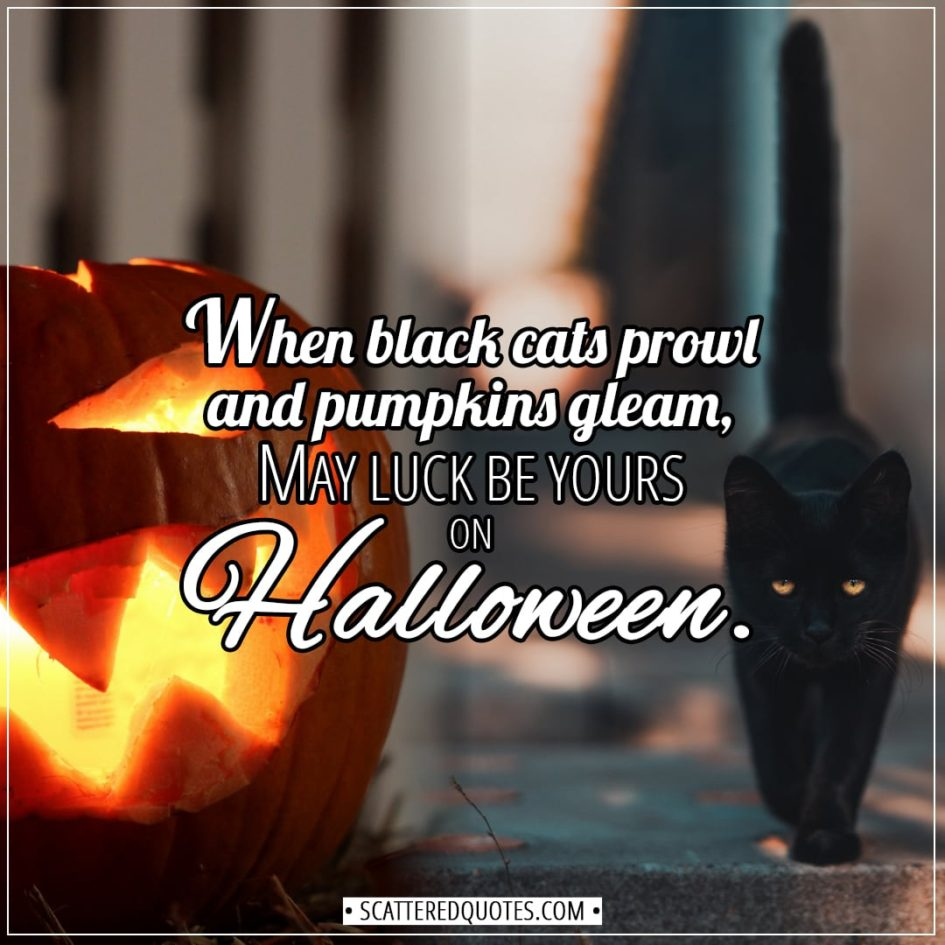 Halloween Quotes - When black cats prowl and pumpkins gleam, may luck be yours on Halloween. - Unknown