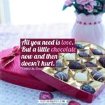 Valentine's Day Quotes | All you need is love. But a little chocolate now and then doesn't hurt. - Charles M. Schulz