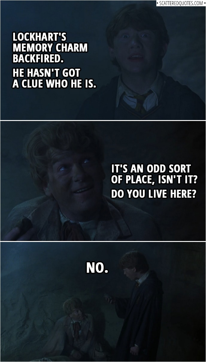 Quotes from Harry Potter and the Chamber of Secrets (2002) | Ron Weasley (to Harry): Lockhart's Memory Charm backfired. He hasn't got a clue who he is. Gilderoy Lockhart: It's an odd sort of place, isn't it? Do you live here? Ron Weasley: No. (knocks out Lockhart with a stone)