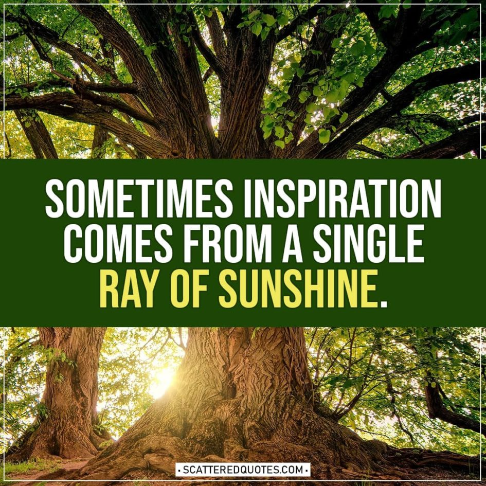 Spring Quotes | Sometimes inspiration comes from a single ray of sunshine.