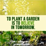 Spring Quotes | To plant a garden is to believe in tomorrow. - Audrey Hepburn