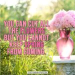 Spring Quotes | You can cut all the flowers but you cannot keep spring from coming. - Pablo Neruda