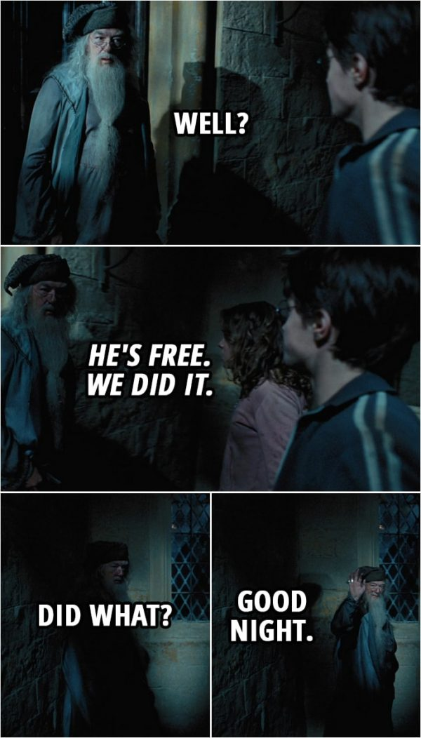 Quote from Harry Potter and the Prisoner of Azkaban (2004) | (After saving Sirius...) Albus Dumbledore: Well? Harry Potter: He's free. We did it. Albus Dumbledore: Did what? Good night.