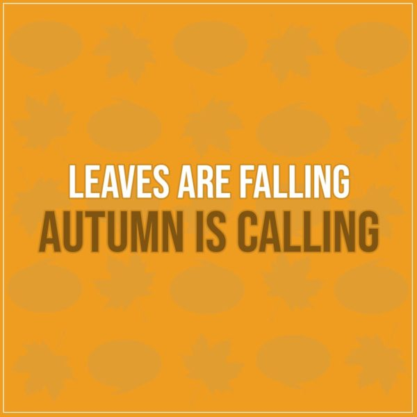 Quote about Fall   Leaves are falling Autumn is calling - Unknown