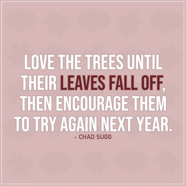 Quote about Fall   Love the trees until their leaves fall off, then encourage them to try again next year. - Chad Sugg