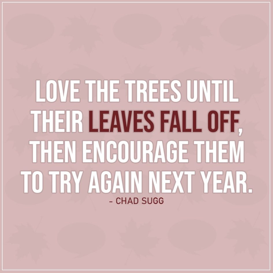 Quote about Fall | Love the trees until their leaves fall off, then encourage them to try again next year. - Chad Sugg