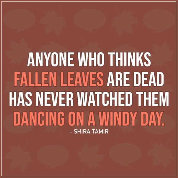 Quote about Fall   Anyone who thinks fallen leaves are dead has never watched them dancing on a windy day. - Shira Tamir