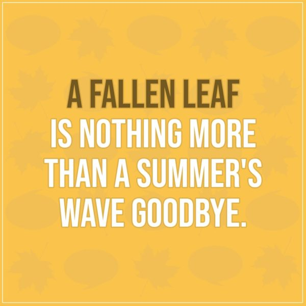 Quote about Fall   A fallen leaf is nothing more than a summer's wave goodbye. - Unknown
