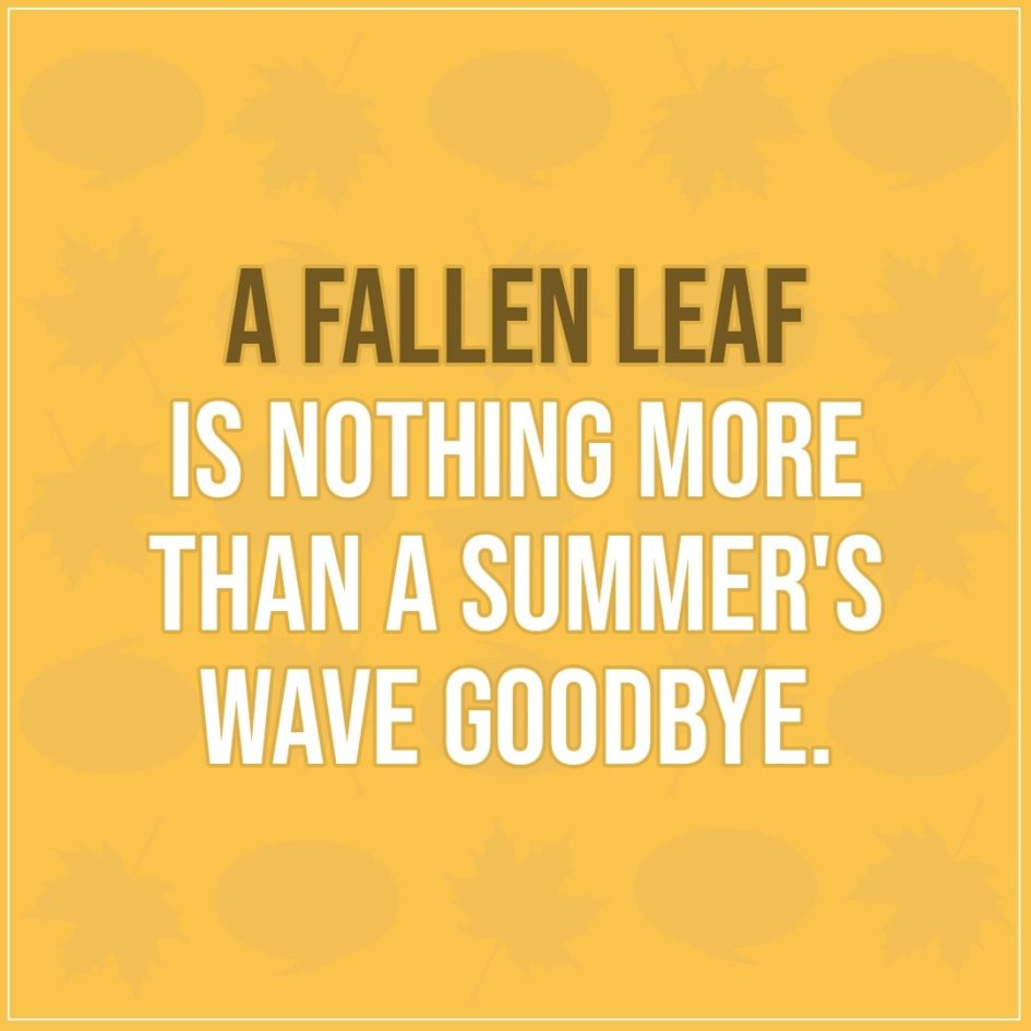 Quote about Fall | A fallen leaf is nothing more than a summer's wave goodbye. - Unknown