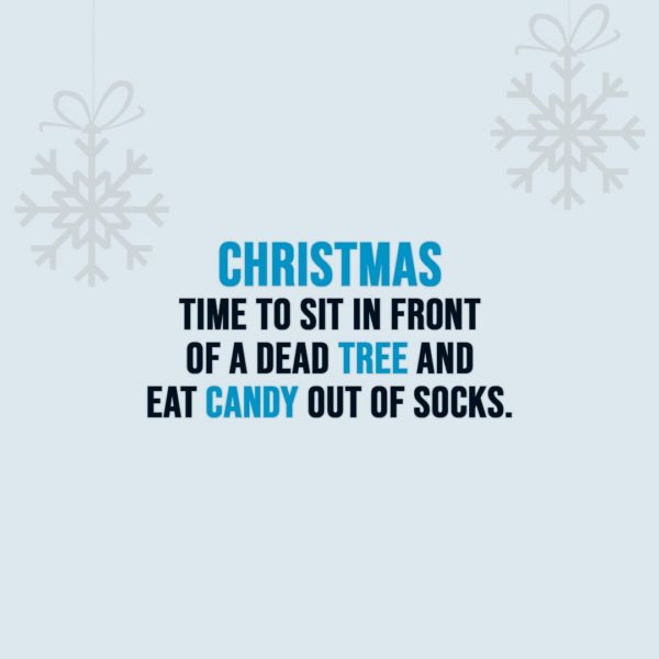 Christmas Quotes | Christmas - Time to sit in front of a dead tree and eat candy out of socks. - Unknown